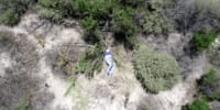 警察のドローンが行方不明の女性を発見 – カリフォルニア州