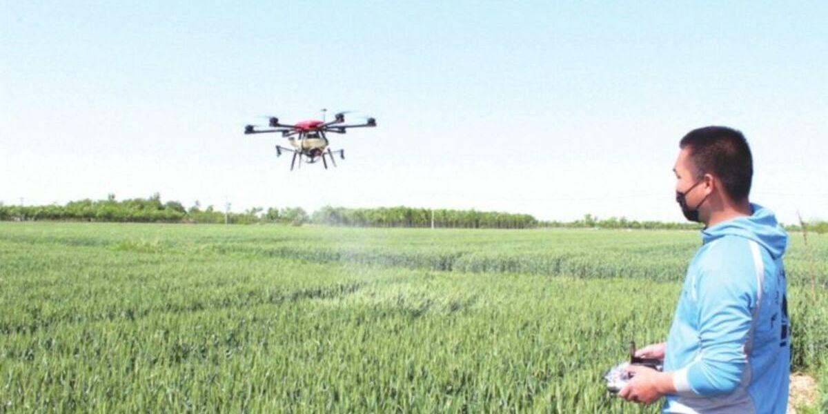 ドローンが小麦畑 約935,000畝に農薬散布 – 中国