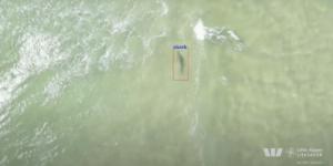 サメ監視ドローンに550万ドル投資 – オーストラリア ニューサウスウェールズ州