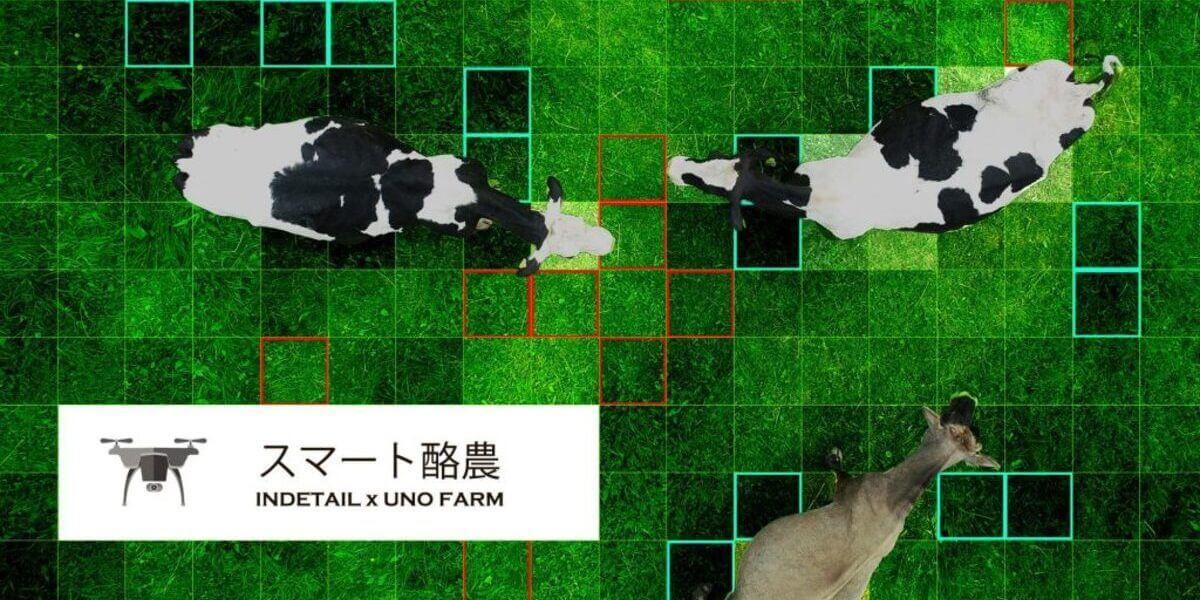 ドローンとAIでスマート酪農の実証実験 – INDETAILと宇野牧場