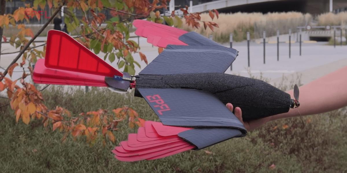 バイオミミクリーの発想!翼を羽ばたかせる鳥型ドローンを開発 – EPFL