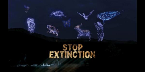 環境保護団体Greenpeace UK、G7サミット中にドローンライトショーでメッセージ