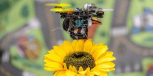 減少するミツバチに代わり、ドローンで受粉を行う研究が進む – アメリカ合衆国