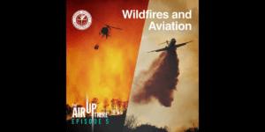 カナダ運輸省、山火事付近でのドローンのフライトを禁止